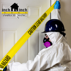 asbestos removal company burlington